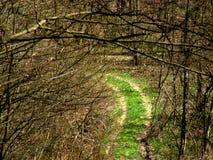 Greenway Imagens de Stock