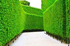 Greenway Fotos de Stock Royalty Free