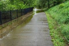 Greenway del fiume di Roanoke subacqueo Immagini Stock Libere da Diritti