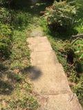 Greenway Lasowy widok 010 Obrazy Royalty Free
