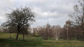 Greenwich Park in London during the winter royalty free stock image