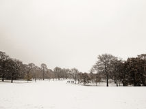 Greenwich park in the snow Stock Photo