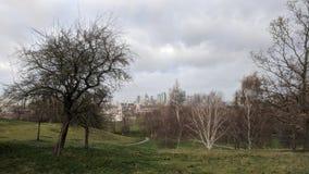 Greenwich parkerar i London under vintern royaltyfri bild