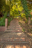 The Greenwich Steps. Stairway, Greenwich Street Stairs leading up to Telegrapf Hill and Coit Tower, a popular attraction in San Francisco, California, United Stock Images