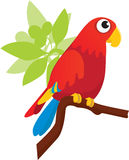 Greenwing Macaw Stock Image