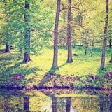 greenwood Royaltyfria Bilder