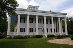 Greenwood plantacja zdjęcie stock