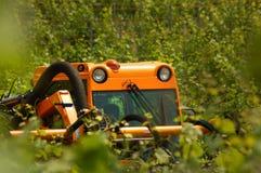 Greenwork Fotografia Stock