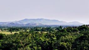 Greeny do southindia da floresta das montanhas Foto de Stock