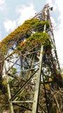 Greeny radio tower. Radio tower full of plant Stock Photos
