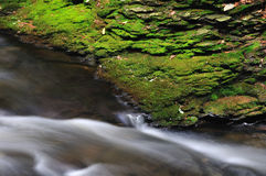 Grees moss covered rock ledge over a flowing brook Royalty Free Stock Image