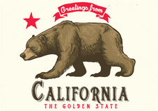 Greeting from california with brown bear Stock Image