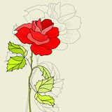 Greeting card. With Rose flower Royalty Free Stock Photos