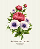 Greeting card with anemone and peony flower. Vector illustration Royalty Free Stock Image