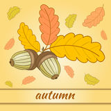 Greeting Card Autumn-01. Greeting card with colorful oak leaves and acorns.Beautiful  illustration on the theme of autumn Royalty Free Stock Photo