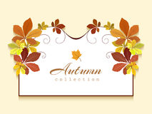 Greeting card with autumn leaves. Autumn background, greeting card or invitation template decorated with yellow chestnut leaves vector illustration