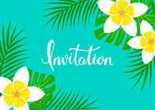 Greeting card background with tropical exotic frangipani plumeria flowers,. Palm and monstera leaves on blue backdrop, hand written lettering invitation Royalty Free Stock Photography