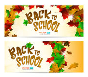 Greeting card or banner to 1 september  on white background. Vector background of autumn leaves with text Back to school Royalty Free Stock Photos