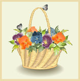Greeting card with a basket with pansies. Royalty Free Stock Images