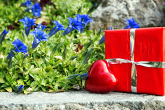 Greeting card with bavarian gentian and a heart and gift Stock Image