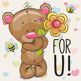 Greeting card Bear with flower Stock Photography