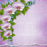 Greeting card with beautiful branch orchid Stock Photos