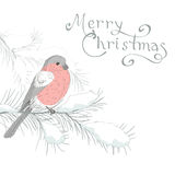 Greeting card with bird 4 Royalty Free Stock Image