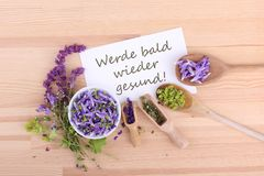 Greeting card with Blossoms. Greeting card with flowers of sage, thyme and ladys mantle and german Text: get well soon Royalty Free Stock Photos