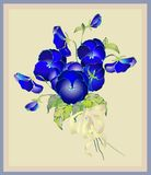 Greeting card with a bouquet of pansies. Royalty Free Stock Images
