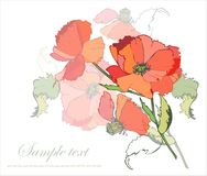 Greeting card with a bouquet of poppies. Royalty Free Stock Photos