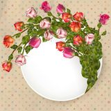 Greeting card with bouquet roses. EPS 10 Royalty Free Stock Photography