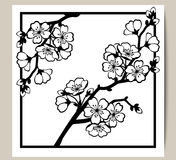 Greeting card with a branch of cherry blossoms. Vector illustration royalty free illustration
