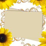 Greeting card with bunch of sunflowers Royalty Free Stock Photos