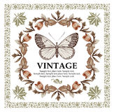 Greeting card. Butterflies. Beautiful frame. Royalty Free Stock Photo