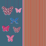 Greeting card with butterflies. The blank cards with Butterflies Royalty Free Stock Photography