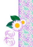 Greeting card with camomiles on lilac floral pattern for International Women's Day. March 8 Royalty Free Stock Photography