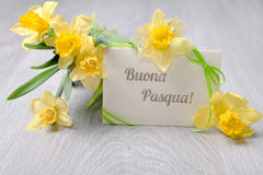 Greeting card with caption. Buona Pasqua (Happy Easter in Spanish) and daffodil flowers stock photography