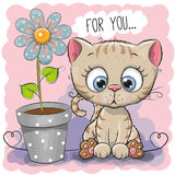 Greeting card Cat with flower Stock Photos
