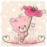 Cat with flower. Greeting card Cat with floweron a pink background