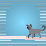 Greeting card with cat and ribbon Stock Photos