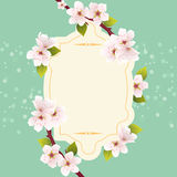 vector greeting card with cherry flowers Royalty Free Stock Photography