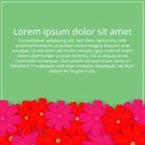 Greeting card with colored flowers. Floral Invitation. Spring  Stock Photo