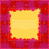Greeting card with colored flowers. Floral Invitation. Spring  Stock Image
