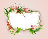 Greeting card with colorful flower background. Stock Images