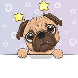 Greeting card cute Cartoon Dog on a blue background Stock Image
