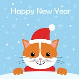 Greeting card with cute cat wear winter outfits. Happy holidays cartoon character. royalty free illustration