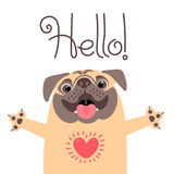 Greeting card with cute dog. Sweet pug says hello. Vector illustration Royalty Free Stock Image
