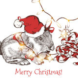 Greeting card with cute hare in Santa hat with garlands and candies Stock Photos