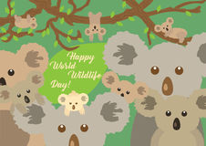 Greeting card cute koalas sitting in the forest. World Wildlife Day. Vector illustration. Cute different koalas sitting in the forest around big green leaf with Stock Photo