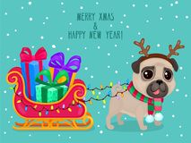Greeting card, cute pug with Christmas sleigh and gifts. Symbol of 2018. Vector color illustration of Christmas dog Vector Illustration